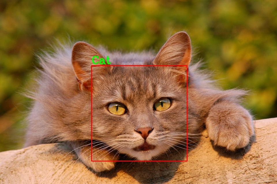 OpenCV检测篇(一):猫脸检测